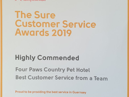 Most commended customer service in 2019!