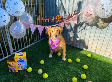 Lottie's birthday party