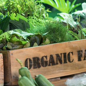 Is it REALLY organic? Sustainable farm to fork supply chain.