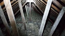 Loft Inspection