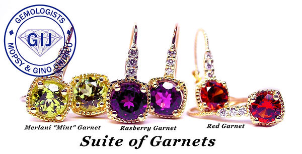 Garnet earrings.jpg