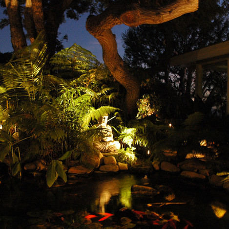 2008 Pond101.jpg