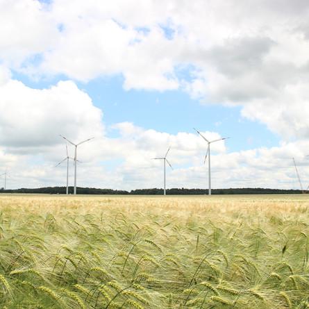 Energiewende in Deutschland: Jeder kann mitmachen!