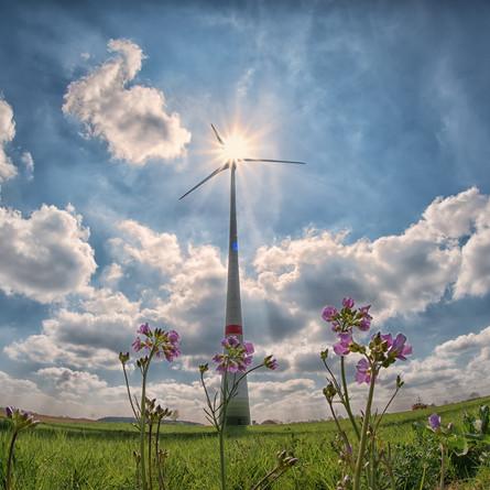 5 Windenergie-Fragen für den Globalen Windtag 2021