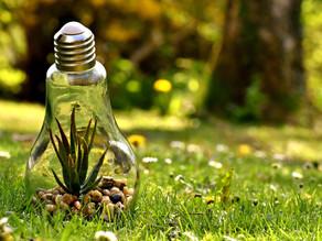 Umweltschutz im Alltag - erste kleine Schritte