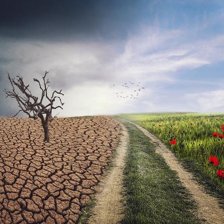 Wetter und Klima - wo liegt der Unterschied?