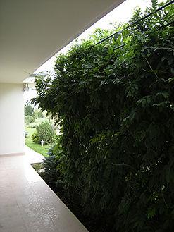 design-interior-casa-vacanta-04.jpg
