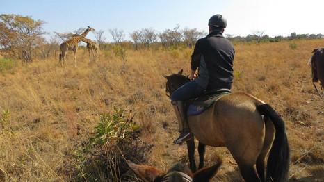 South Africa: Horseback Safari.