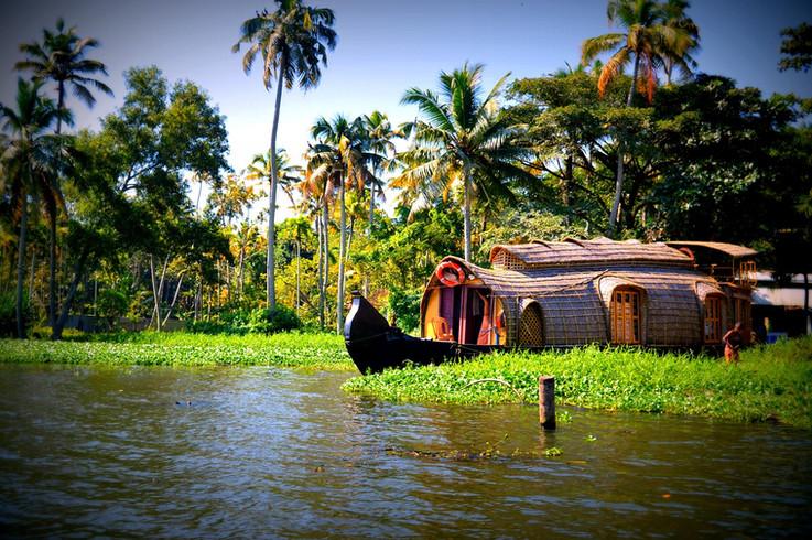 India: Kerala, Cochin, Kumarakom, Marari Beach