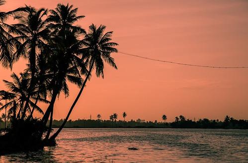 india kerala sunset-1139296_640.jpg