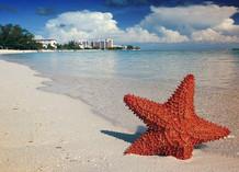 Caribbean: Bahamas, Canouan, St. Vincent, Grenadines.