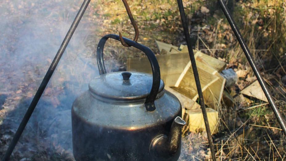 Canopy - tea brewing