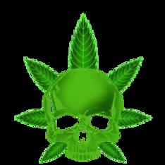 cannabis-skull-gift-icon-smoking-weed.we