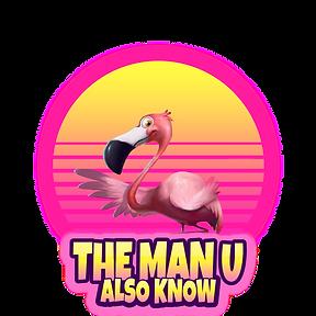 the man u.png