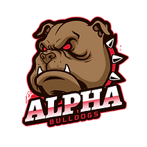 sports-squad-logo-generator-featuring-a-