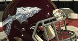 DB Helmet Pic.jpg