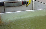 PRODUCT PHOTO - Floodwater Control.jpg