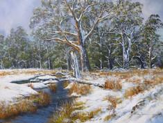 Nash_Brian_Snowfall near Daylesfod_land_
