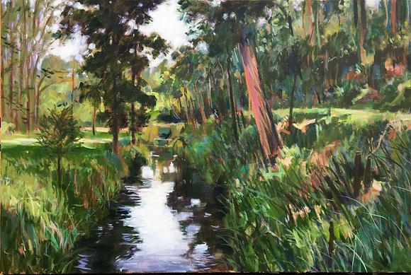 Wombat Creek at Jubilee Lake