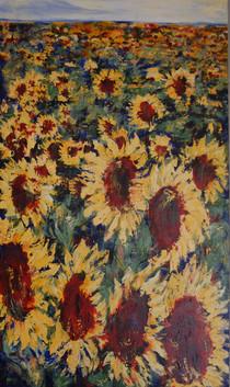 Primmer_Marg_Sunflowers_land-121.jpg
