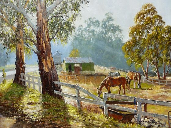 Conroys Trotting Stables Daylesford