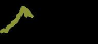 swopa_logo_web2.png