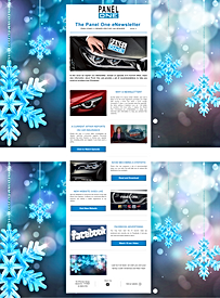Example of Panel One eNEWSLETTER to clients