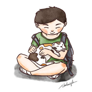 Boy playing with stray calico cat