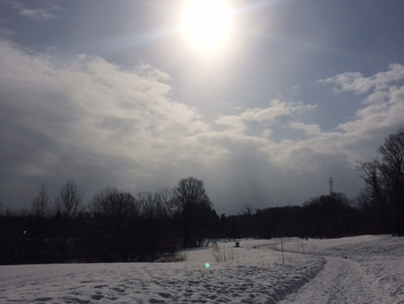 冬を楽しみました
