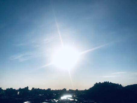 太陽に勝るものなし、と感じた今朝
