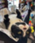 Lennox_Store6_sm.jpg