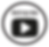 VideoIcon2.png