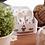Thumbnail: Chaussons Lou - Croche Patte