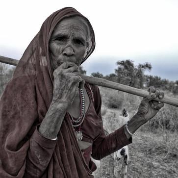 Tree cutter, Rajasthan