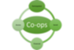 Coop%20Graphic_edited.png