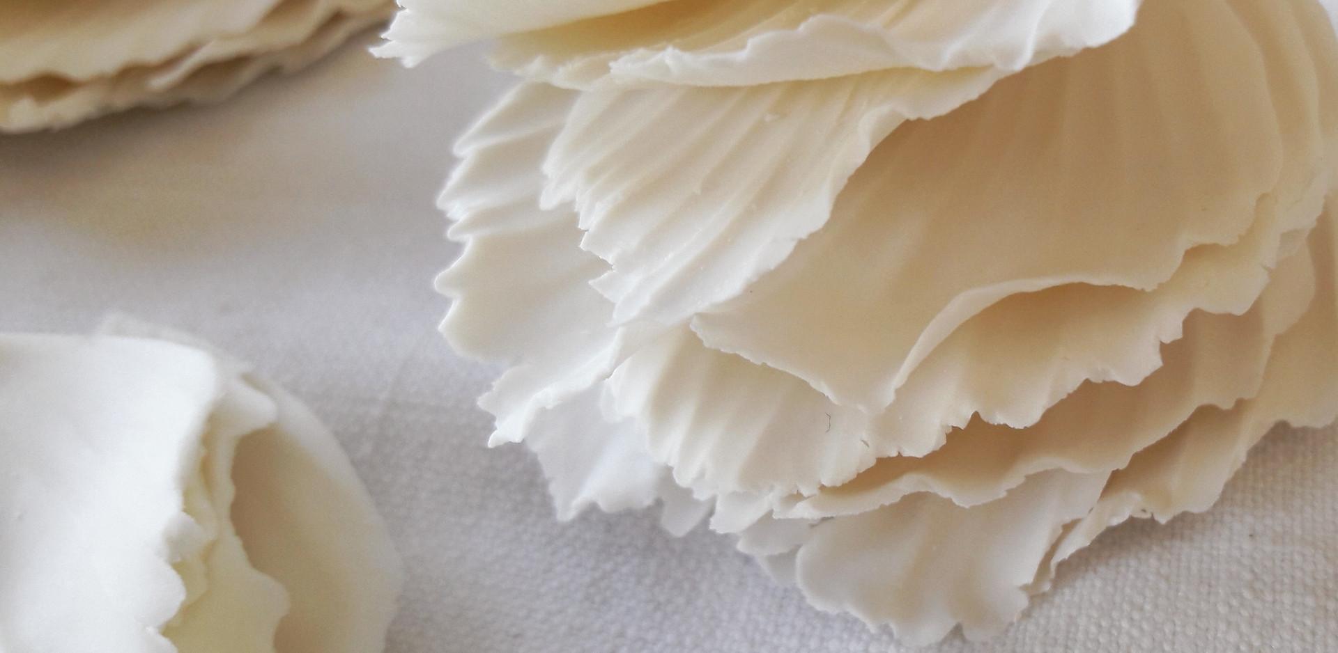 Plumes de porcelaine