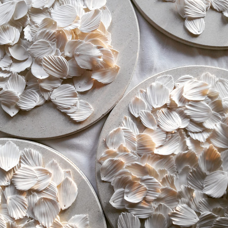 plumes-porcelaine