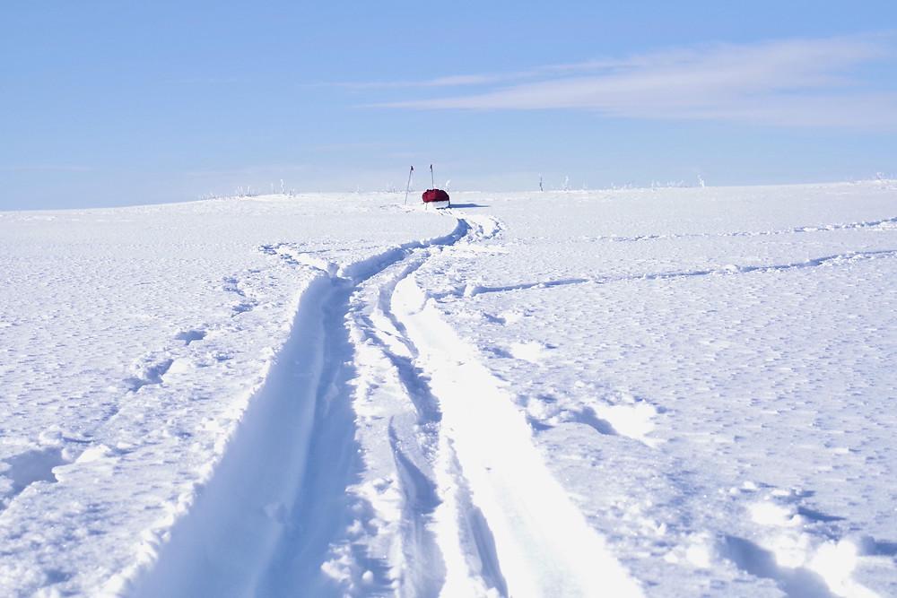 Djupa spår i snön...