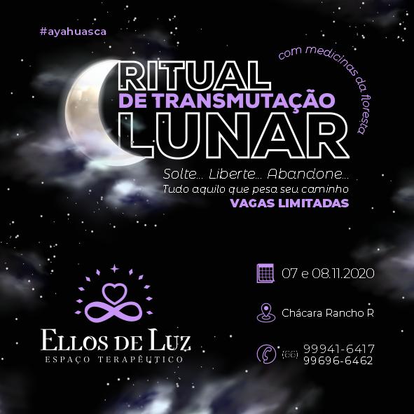 Ellos de Luz 01.png