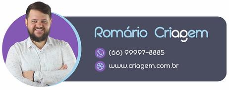 AssinaturaRomario.png
