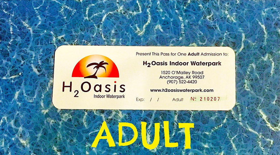 H2Oasis Adult Ticket (Day Pass)