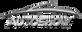 CIAS 2019 Logo Approved Pos No Sponsors