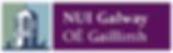 nui galway logo.png