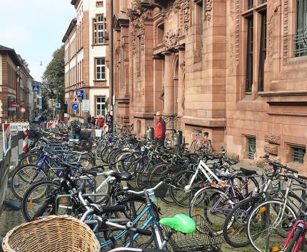 university-of-heidelberg-bike-stands.jpg