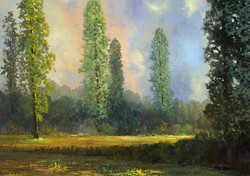 Patterson Mike - A Passing Storm-2