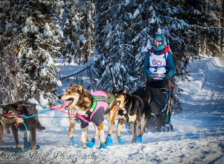 """The Start-Nome, Here We Come!""-Our Rookie Iditarod Story, Part Three"