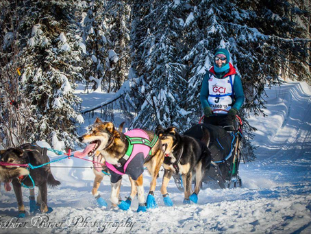 """""""The Start-Nome, Here We Come!""""-Our Rookie Iditarod Story, Part Three"""