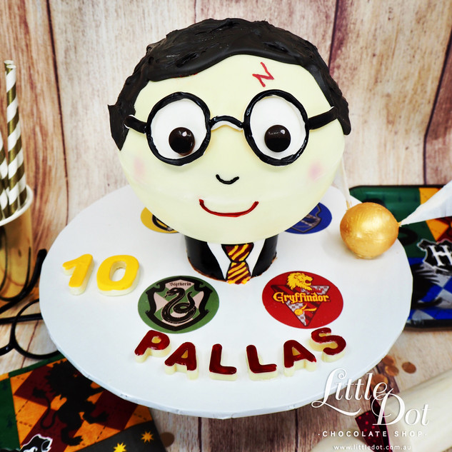 Harry Potter Chocolate Pinata Smash Cake