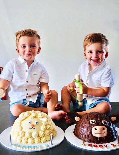 Farmyard Piñata Smash cakes