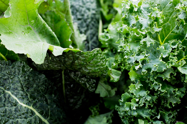 Dark-Leafy-Greens1